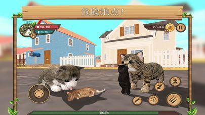 猫咪生存模拟器中文版游戏安卓版  v3.6图5