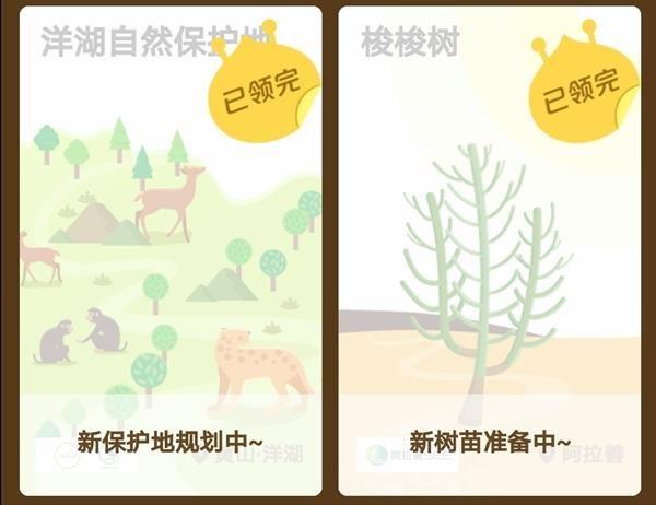 支付宝蚂蚁森林花棒需要多少能量?支付宝蚂蚁森林花姑娘怎么种?[多图]图片6