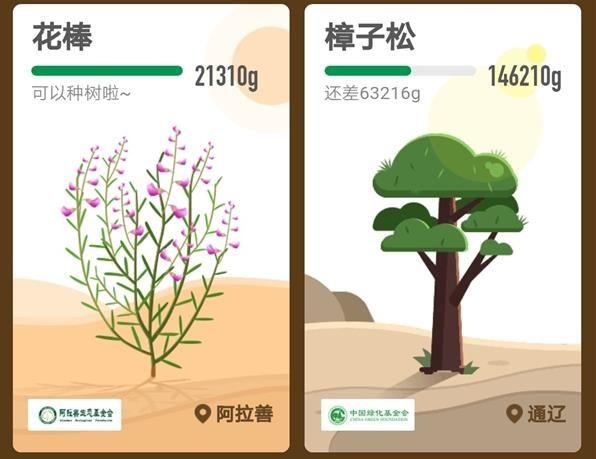 支付宝蚂蚁森林花棒需要多少能量?支付宝蚂蚁森林花姑娘怎么种?[多图]图片4
