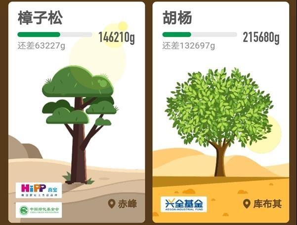 支付宝蚂蚁森林花棒需要多少能量?支付宝蚂蚁森林花姑娘怎么种?[多图]图片5