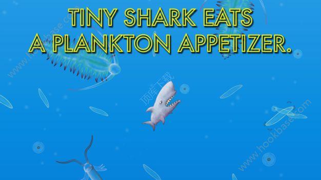 美味的海洋海豚版安卓版  V1.3.4.0图2